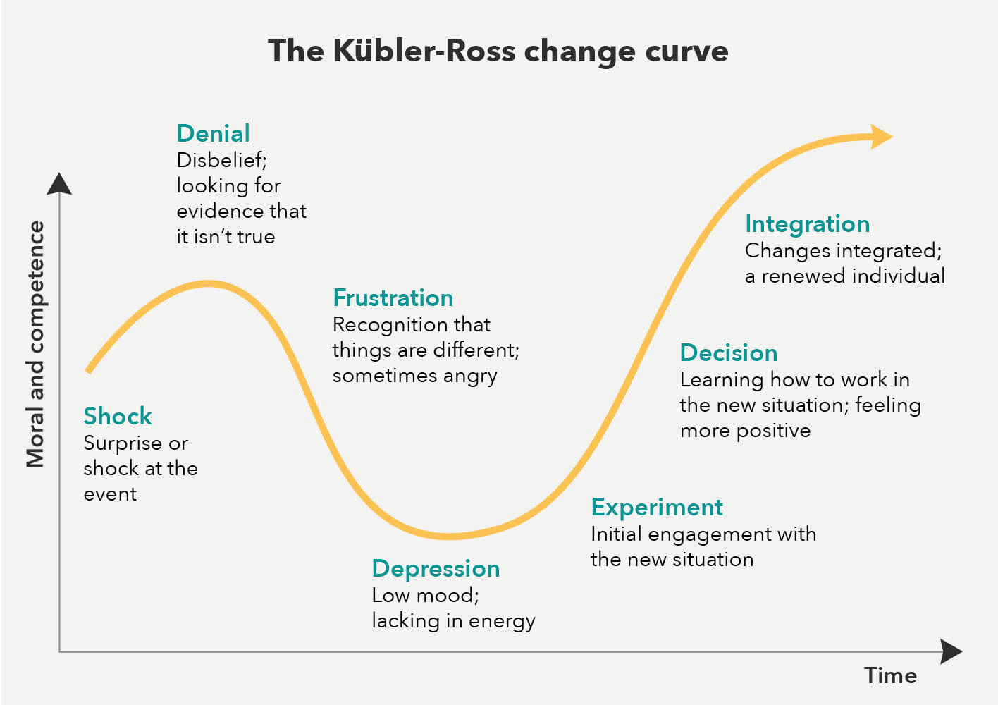 The loss curve